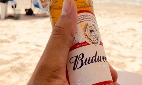Budweiser offering by AB InBev becomes second largest IPO of the year